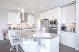 Kitchen Cabinets In Calgary The Fairmont Kitchen In Evanston U2013 Trico Homes U2013 Check Out The New