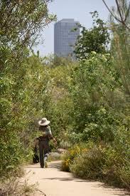 los angeles native plants vista hermosa natural park los angeles california library of