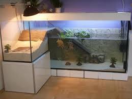 best 25 turtle aquarium ideas on turtle terrarium