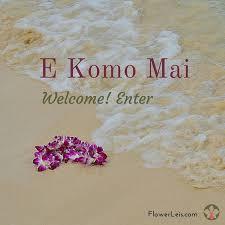 Hawaii travel expo images Best 25 hawaii language ideas hawaiian phrases jpg