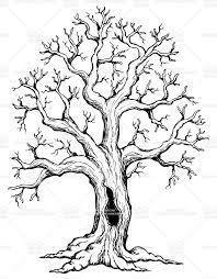 best 25 oak tree drawings ideas on pinterest branch drawing