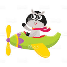 cute funny raccoon pilot character flying on airplane cartoon