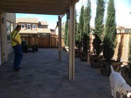 napa backyard pergola pet turf pavers u0026 concrete forever greens