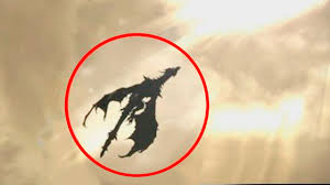 5 dragons caught on camera u0026 spotted in real life youtube