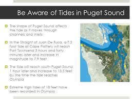 Puget Sound Tide Table When Is The Best Time To Go Beachcombing Or Tide Pooling High