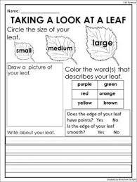 free fall leaf observation sheet science center activity http