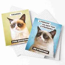 grumpy cat wrapping paper grumpy cat assorted note cards set of 20