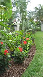 Backyard Trees Landscaping Ideas by 25 Tropical Outdoor Design Ideas Flower Stands Hibiscus And