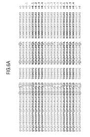 patent us7871615 humanized antibodies that recognize beta