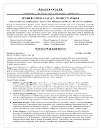 business management resume exles business analyst resume by adam sandler exle of business