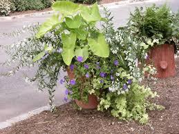 home decor foxy garden planter design ideas for garden design