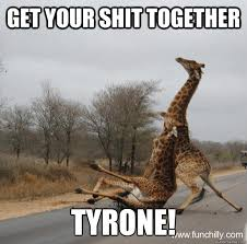 Get Your Shit Together Meme - get your shit together tyrone giraffe quickmeme