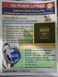 herbal alami jual vig power capsule vig power capsule obat