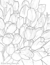 tulips coloring coloring