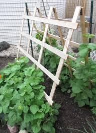 green bean trellis wooden tripod trellis ideas for green beans