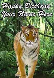 tiger jungle card birthday a5 personalised greeting card