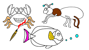 ant and fish and crab coloring page learn the colors for kids