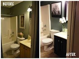 Bathroom Window Ideas by Bathroom No Window With Design Image 6481 Murejib