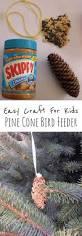 best 25 pine cone bird feeder ideas on pinterest pinecone bird