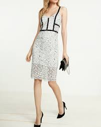 lace dress contrast piped lace sheath dress express
