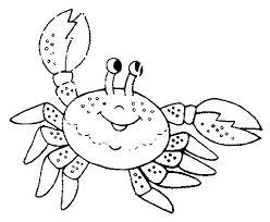 imagenes animales acuaticos para colorear animales oceanicos para colorear para e a dibujos animales acuaticos