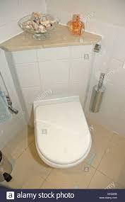 Eljer Patriot Toilet Corner Toilet Carpetcleaningvirginia Com