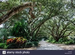 Canopy Plural by Vero Beach Florida North Hutchinson Orchid Island Ladybug Lane