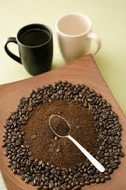 ground eggshells fertilizing plants with coffee grounds and eggshells hunker