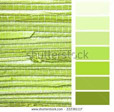 grasscloth stock images royalty free images u0026 vectors shutterstock