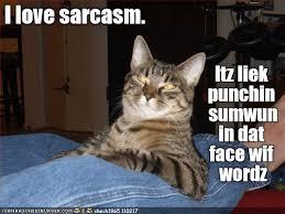 Sarcastic Cat Meme - lolcats sarcasm lol at funny cat memes funny cat pictures