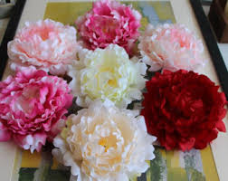 wholesale peonies peony flowers etsy