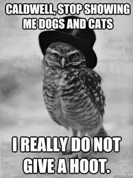 Benson Dog Meme - old money dog a meme for the 1 percent the daily dot