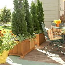 5 ways to decorate your deck plant for privacy landscaping