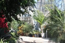 Botanical Gardens In Birmingham Al Inside One Of The Greenhouses Picture Of Birmingham Botanical