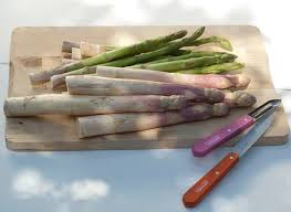 cuisiner asperges recettes à base d asperges et conseils nutrition