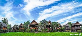 best price on pai homey in pai reviews