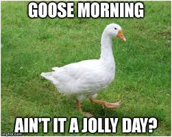 Goose Meme - imgflip