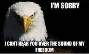 Freedom Eagle Meme - murica meme eagle
