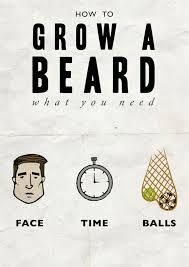 Meme Beard Guy - what you need to grow a beard beard meme from beardoholic com