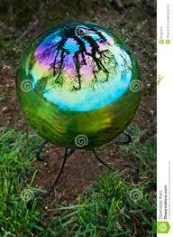 Garden Gazing Globe Gazing Ball With Tree Reflection Stock Photo Image 51681373