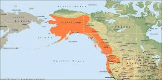 Native American Map Of North America Native Trout Fly Fishing Chinook Salmon