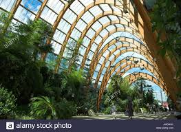 shoppers in the winter gardens sheffield stock photo royalty