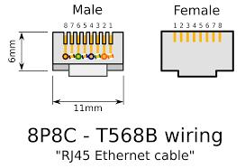 rj11 socket wiring diagram australia wiring diagram simonand