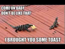 Funny Relationship Meme - come on baby don t be like that i brought you some toast funny