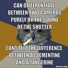 Art School Owl Meme - 158 best art student owl images on pinterest college mom artist