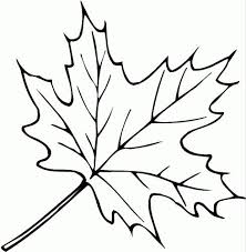 77 coloring trees u0026 leaves images coloring