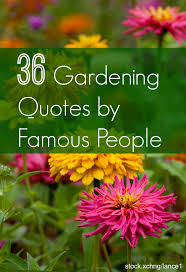 wedding quotes quote garden 14 diy ideas for your garden decoration 14 quotes inspirational