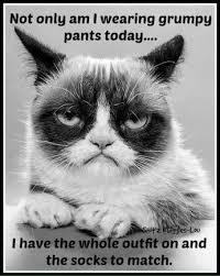 Grumpy Cat No Memes - i m not grumpy today but this is pretty funny and i think grumpy