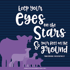 quotes about family judging inspired quotes u2022 eyes on the stars u2013 stock show boutique