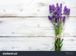 lavender bouquet fresh flowers lavender bouquet top view stock photo 721085017